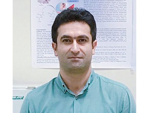 Selection of a Distinguished Faculty Member of Ferdowsi University of Mashhad in the  List of Scientific Experts of the Country in 2019