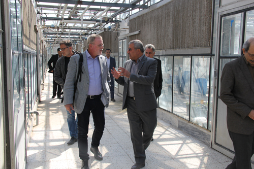 Agricultural Advisor to the Dutch Embassy in Iran and Accompanying Delegation visited Faculty of Agriculture of FUM